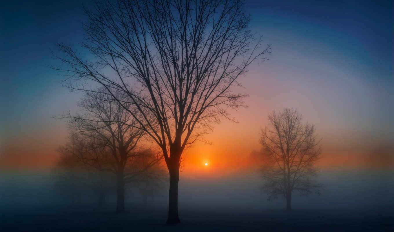 nature, утро, рассвет, солнце,
