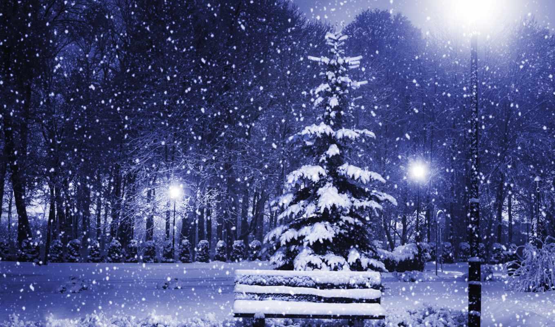 снег, winter, времена, природа, года, christmas, деревья,