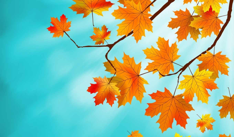 листва, осень, осенние, природа, maple, картинка, ветки, pictures, pin,
