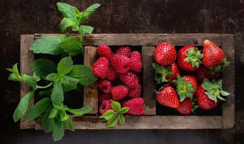 ягода, id, pazel, pazlyi, fondo, cover