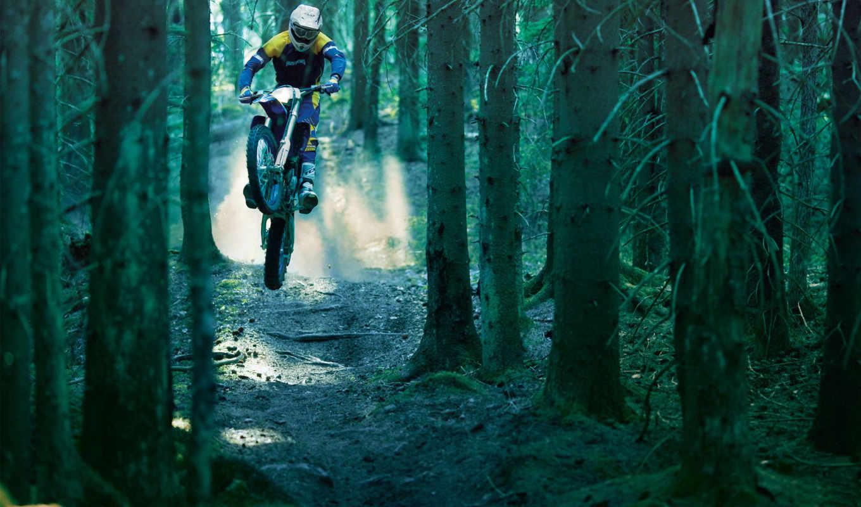 прыжок, лес, husaberg, fe, motocross, sport, www, motorbikes, path, sports, piicss, health,