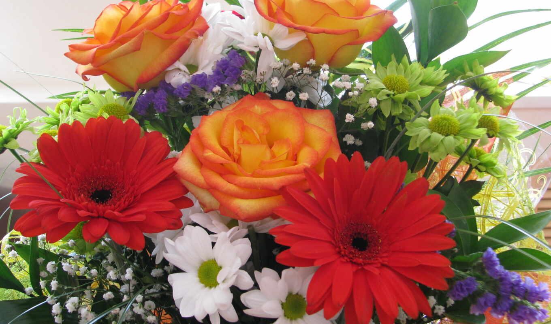 цветы, герберы, букеты, букет, розы, взгляд,