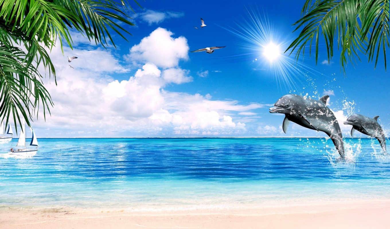 Открытка с морем и пальмой
