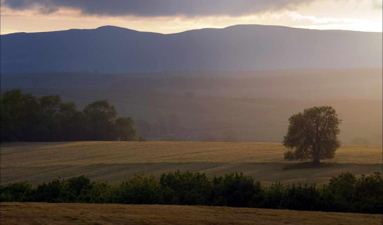 природа, sun, небо, hill, foggy, landscape, parte, landscapes,