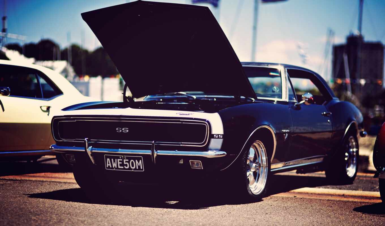 muscle, car, американский, песнь, stylish, авто, drawing, музыка, website, formatı