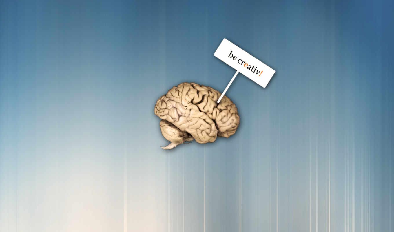 креатив, юмор, поздравляю, bidibidi, creativ, мозг, креативным, буть, cerebro, гильдии,