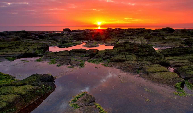 природа, peaceful, free, небо, красавица, photos, images, изображение,