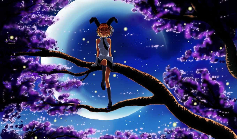луна, небо, trees, оригинал, девушка, emma, pinhoemma, goosebumps, pinterest,
