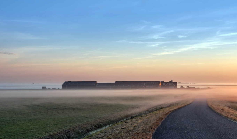 дорога, туман, пейзаж, картинка, картинку,