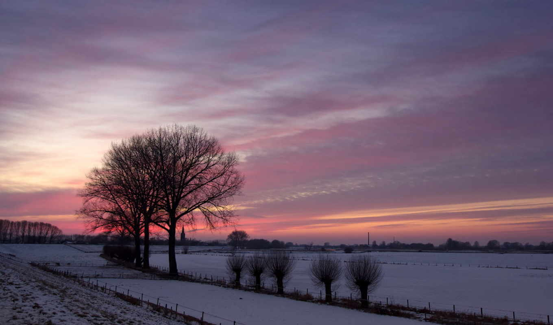 природа, поле, закат, деревья, пейзаж, зима,