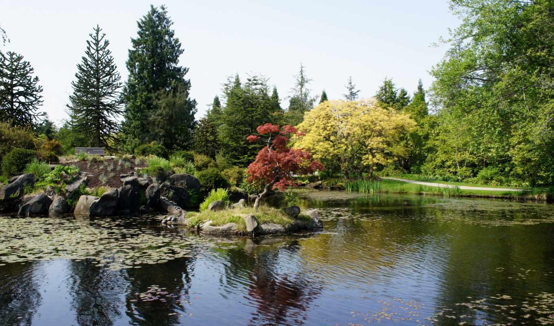 канада, природа, картинка, vancouver, пруд, сады, botanical, vandusen,