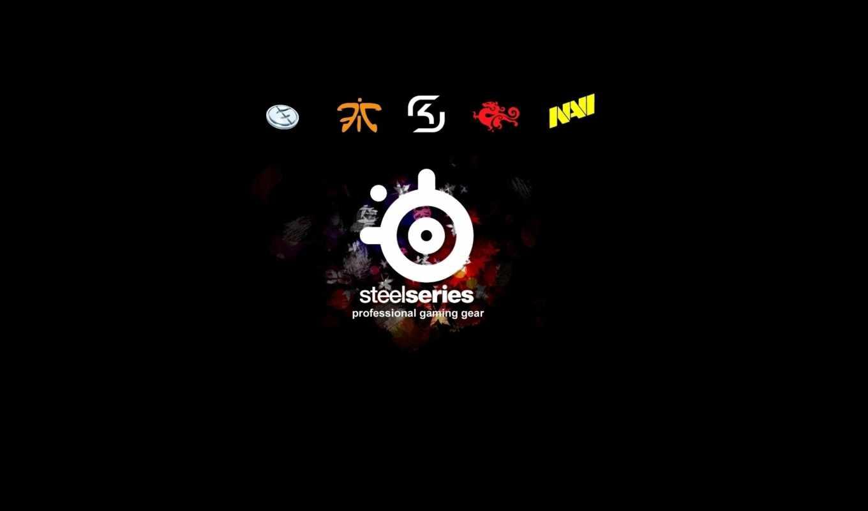 steelseries, navi, logo, sk, gaming, стилсериес, evil, geniuses, fnatic,