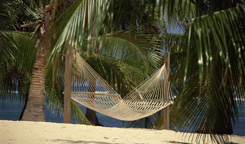 гамак, tropical, пальмы, море, рай,