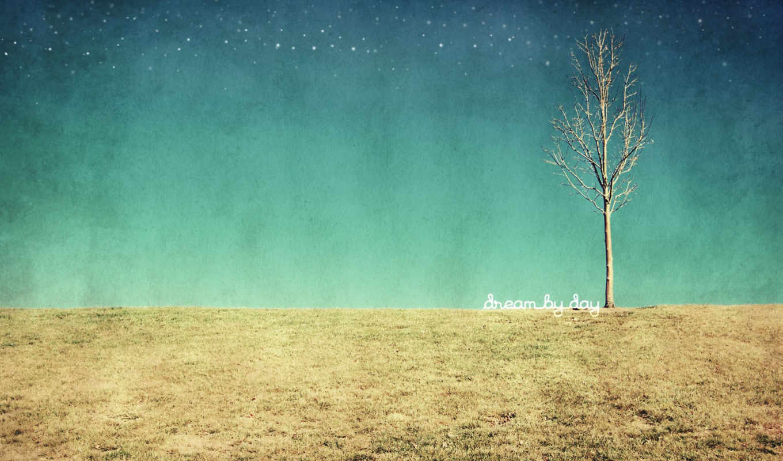 дерево, поле, текстура, dream, картинку, контекстном, нажать, браузера, выбрать, правой, картинке, кнопкой, club, winx,
