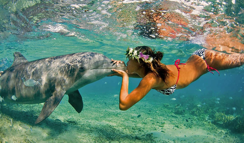 девушка, море, дельфин, природа, океан, поцелуй, лето, rekoru, kıran, kareler,