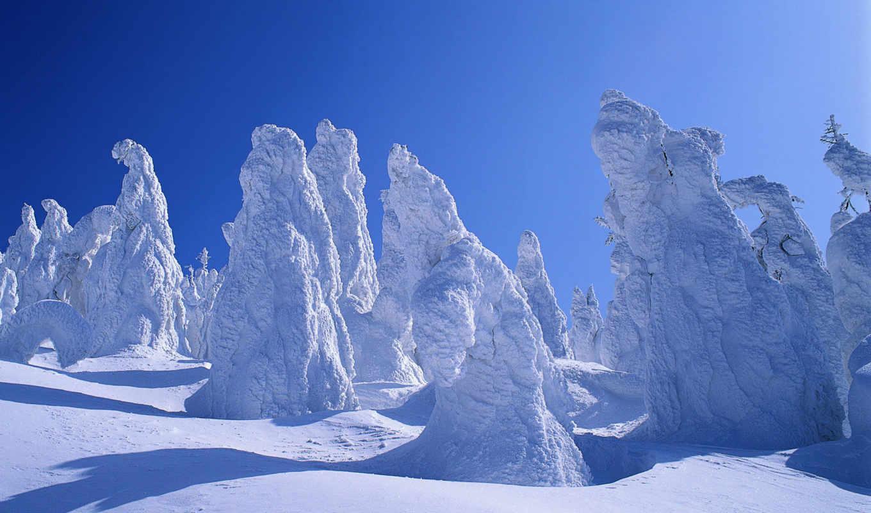 природа, снегу, деревья, от, snow, winter, tree, windows, sa, part, poze, depositfiles,