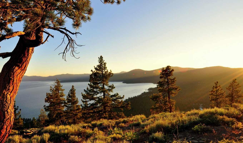 природа, озеро, картинка, закаты, рассветы, trees, тахо, рассвет, лес, high,