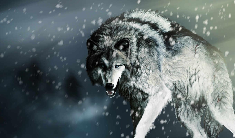 волк, найти, qr, изображение, код, тегам,