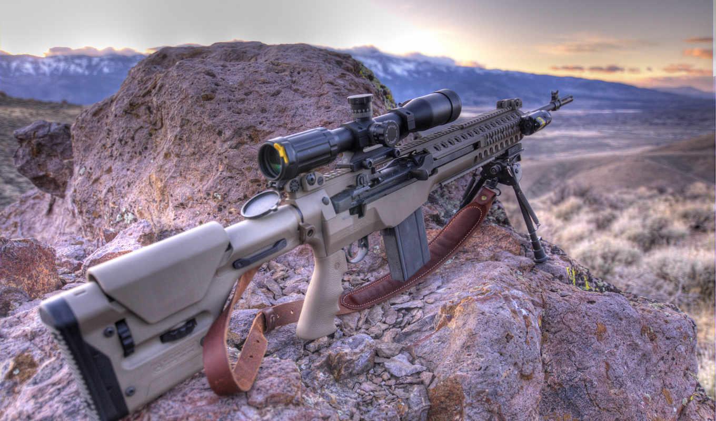 mcs, troy, винтовка, оружие,