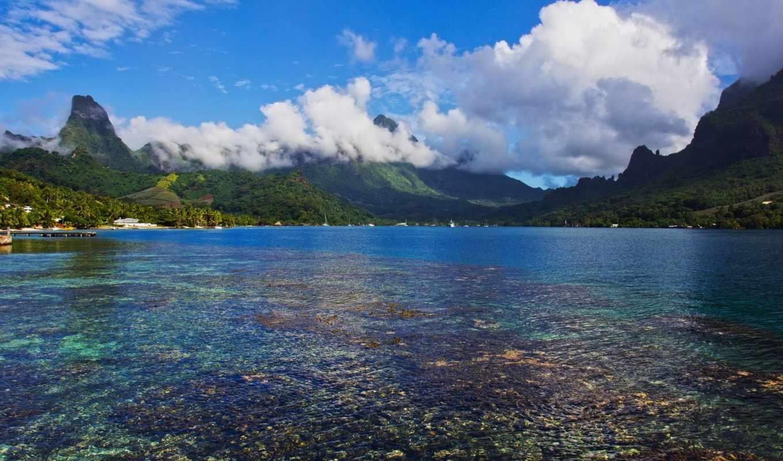 pacific, south, desktop, moorea, остров, you, пляж,