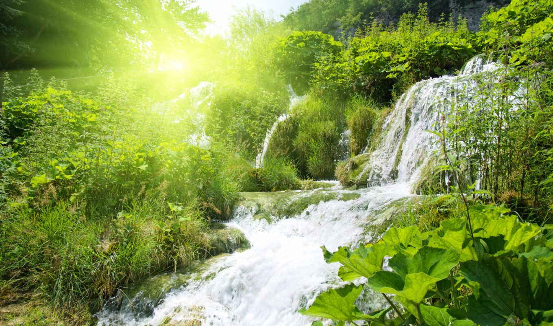 nature, водопад, изображения, paradise, ons, изображение, free, природы, лес, sunrise, kuo,