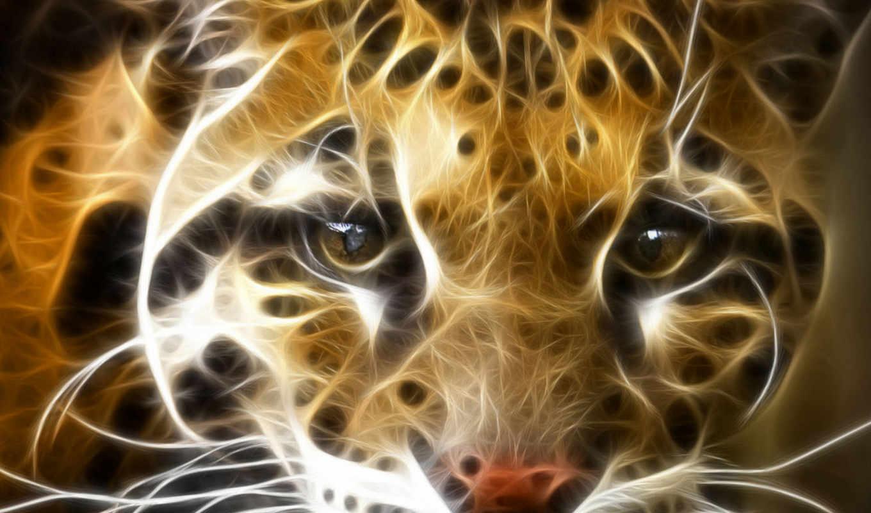 fire, tiger, desktop, click, background, download, resolution, right, fractal,