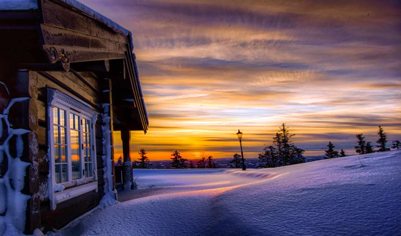 tweets, только, красивые, winter, заставки, daily, деревья, снег, сугробы, latest,
