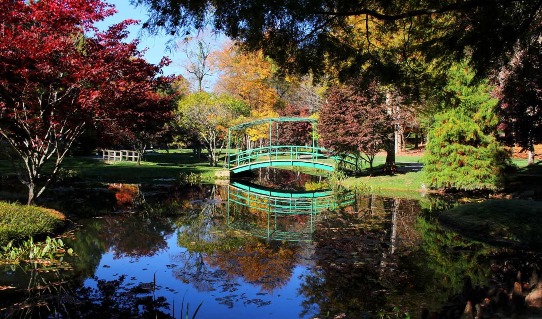 мосты, природа, деревья, коллекция, парки,