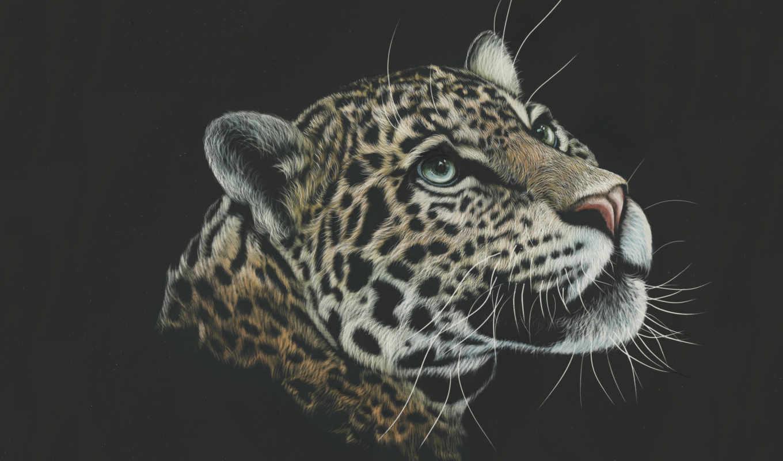 леопард, большие, кошки, леопарды, рисованные, black, краска, ноутбук,