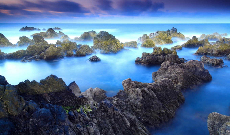 красивых, ocean, collector, фотографий, качества, unique, tee, ярких, отличного, различной,