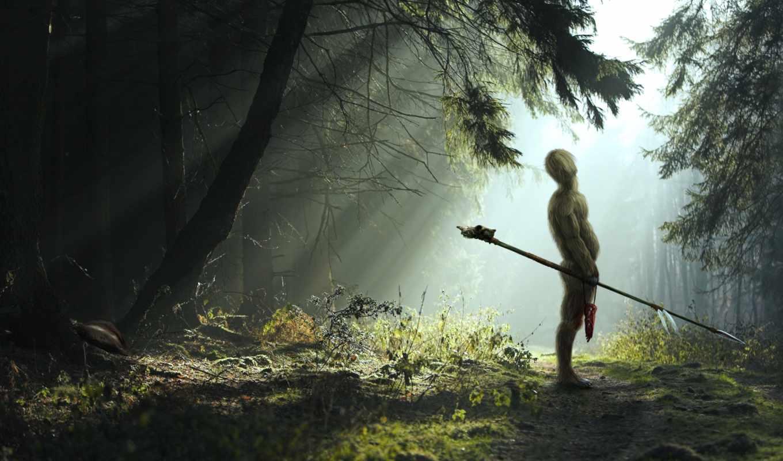 fantasy, лес, деревя, обоях, добавлено, утро, взгляд,