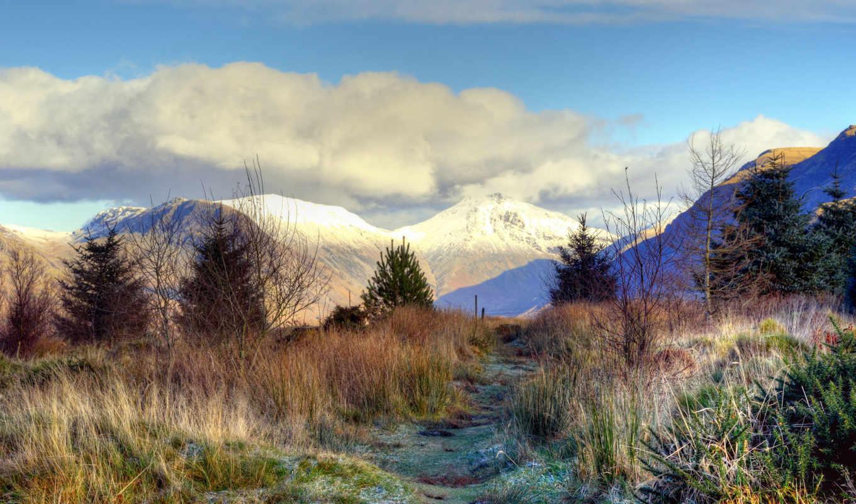 снежные, вершины, иней, заморозки, пейзажи -, android, горы, трава, без,