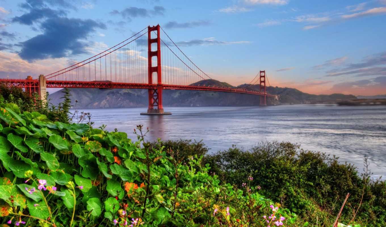 мост, gate, золотистый,