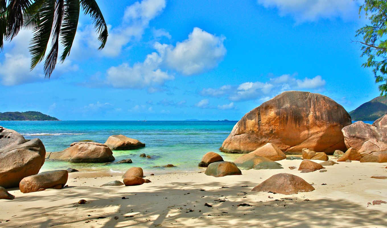 seychelles, океан, экзотика, отдых, природа, relax, beach, lei,