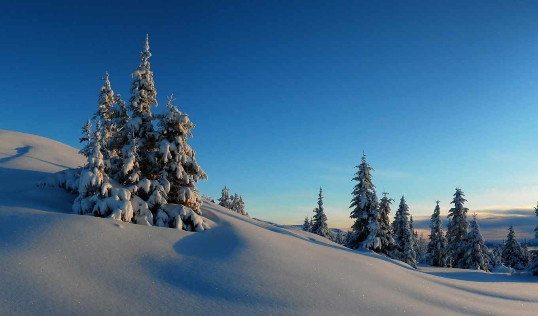 снег, winter, только, заставки, небо, красивые, daily, деревья,