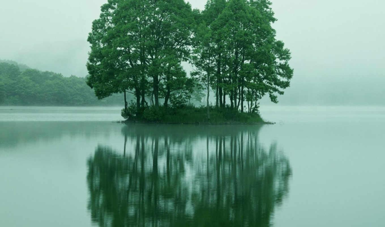 деревя, воде, небо, остров, water, деревьями,
