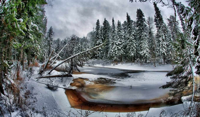 дек, зимних, skazka, зимняя, зимние, зимней, зимы, коллекция, подборка, zima,