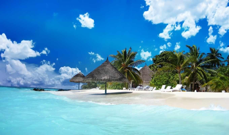 картинку, установить, красивые, пляжная, природа, качественные,