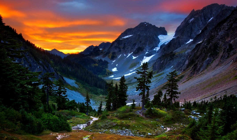 горы, лес, природа, взгляд, fone, заката, горах,