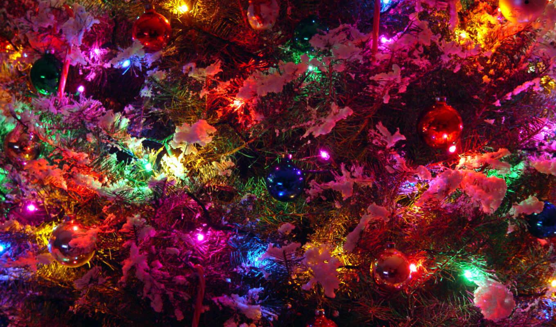 дерево, совершенно, категория, год, new, дек, праздники,