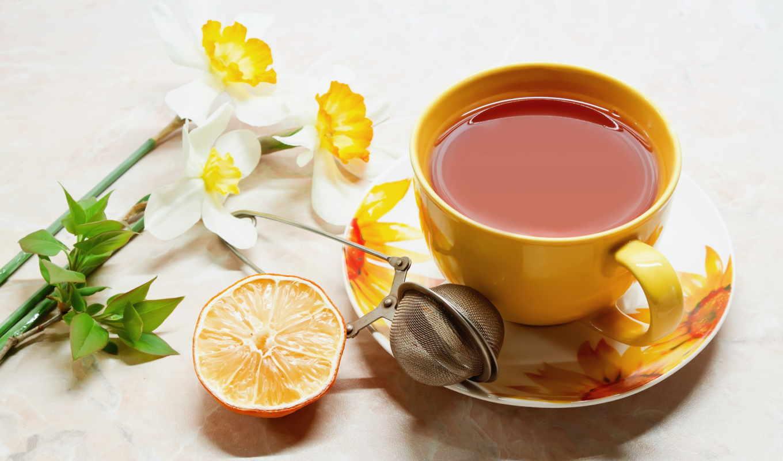 чая, нов, нашем, высокого, этого, need, выберите, качества, сайте, напиток, cup,