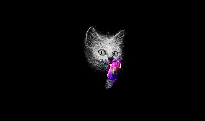 Картинки с кошками и надписями на черном фоне