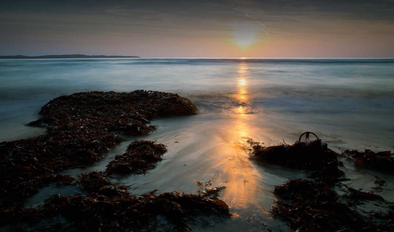 пляж, сайте, море,
