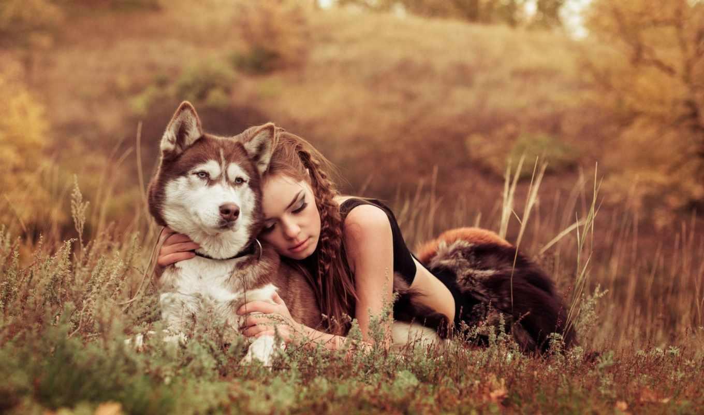 девушка, собака, поле, трава