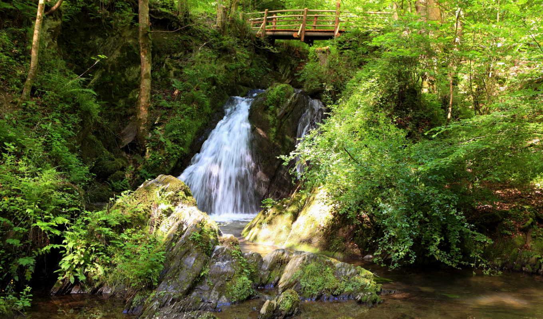 природа, водопады, водопад, мост,