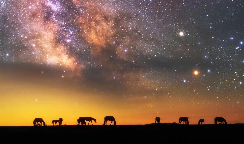 лошадь, ночь, star, небо, заставка, млечный, путь