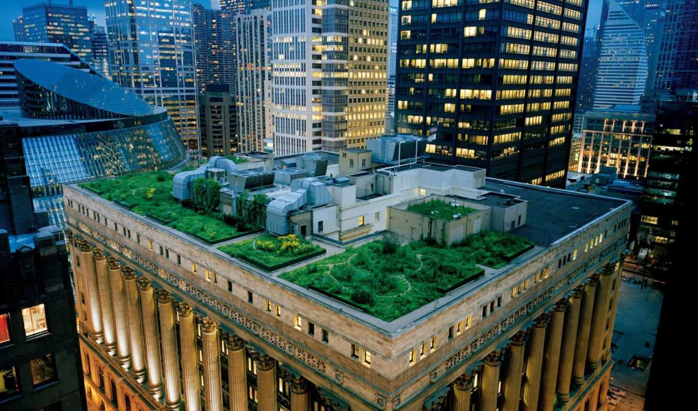 сад, крыша, небоскребы, архитектура, терраса, крыша, чикаго, сша, вечер, дома, building,