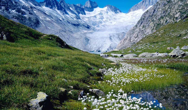 альпы, швейцария, швейцарии, nearby,