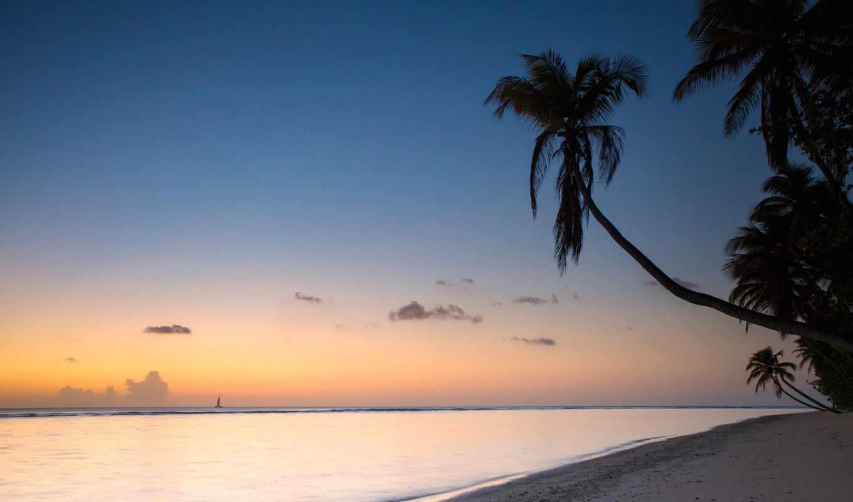 Pigeon Point at Sunset, Tobago  № 1471806 без смс