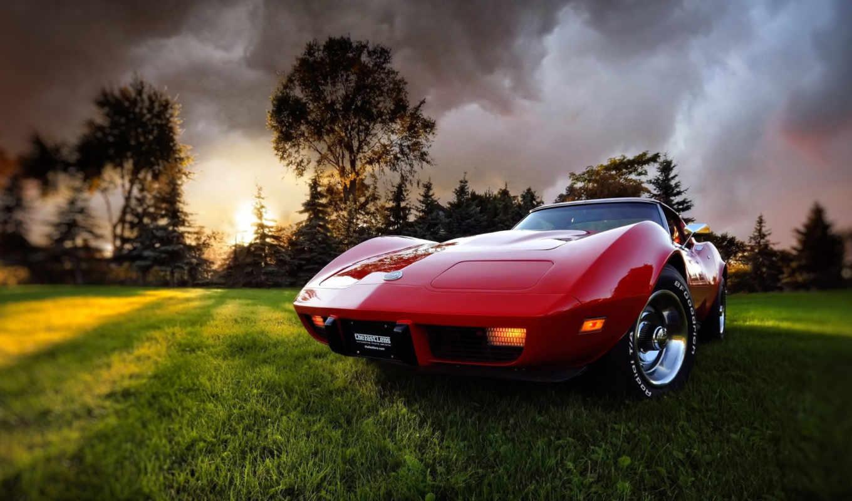 авто, красное, солнца, лучи, поляна, трава, свой, совершенно,